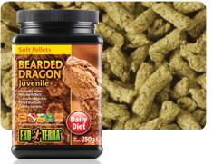 Alimento blando Exo-Terra para dragones barbudos juveniles