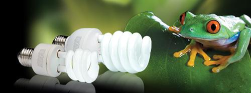 Bombillas Exo-Terra Natural Light para Terrarios