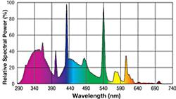 Exo-Terra Repti Glo 10.0 - tubo fluorescente espectro