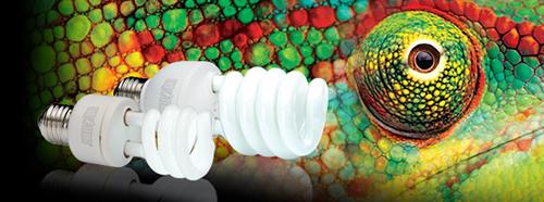 Bombillas Exo-Terra Reptile Vision para reptiles