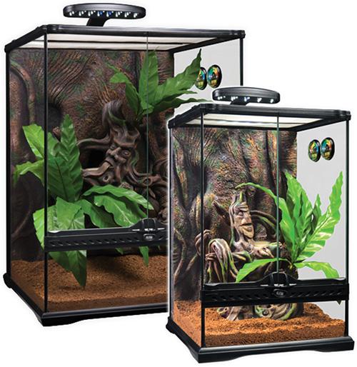 Kit de Terrario Exo-Terra para Geckos Crestados
