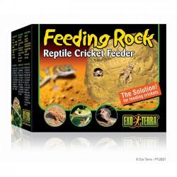 Feeding Rock - Comedero de Exo-Terra para Reptiles y Anfibios