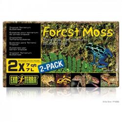 Sustrato Exo-Terra Forest Moss Terrarios Tropicales