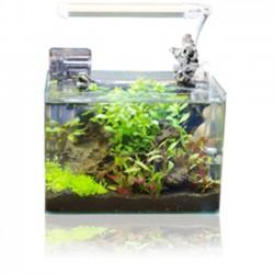 BLAU Cubic Aquariums en formato Cubo