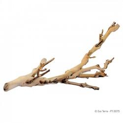 Rama Exo-Terra Forest Branch pequeña