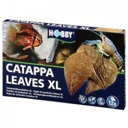 Hobby Catappa Leaves XL - hojas de almendro para acuarios
