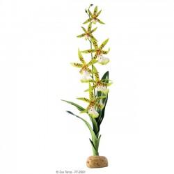 Spider Orchid de Exo-Terra - Orquídea sintética para terrarios