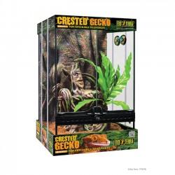 Exo-Terra Crested Gecko Kit - pequeño
