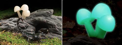 Refugio Exo-Terra Glow Mushrooms